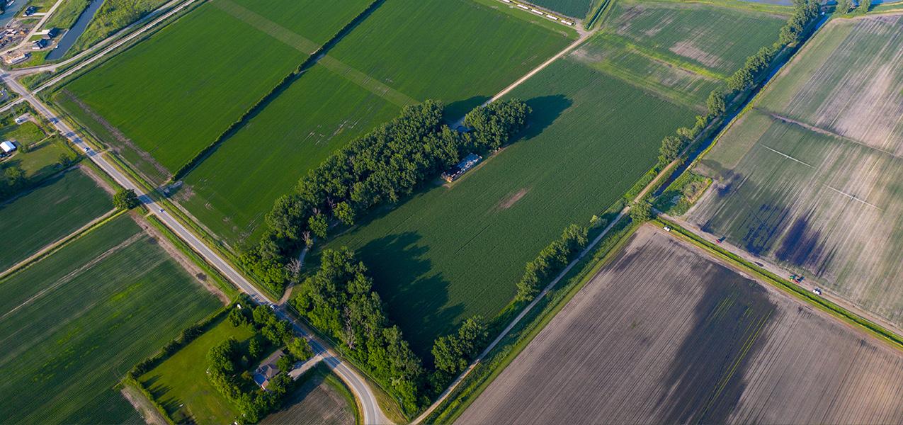 Agriculture/Farmland